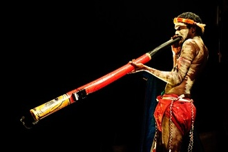 Didgeridoo (VWO12 2007-I)