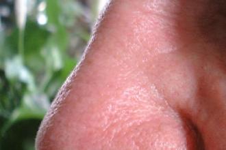 Zelfisolatie van fysicus leidt tot onverwacht neusletsel