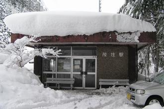 Sneeuw op het dak