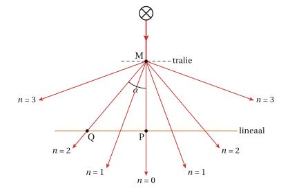 SysNat_tralie_figuur_1
