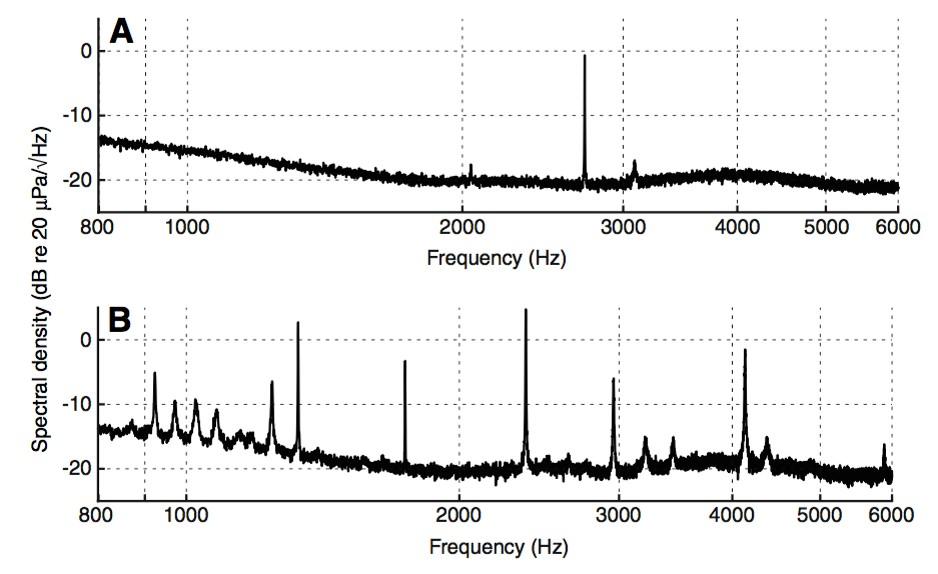 Spectrum otoakoestische emissies