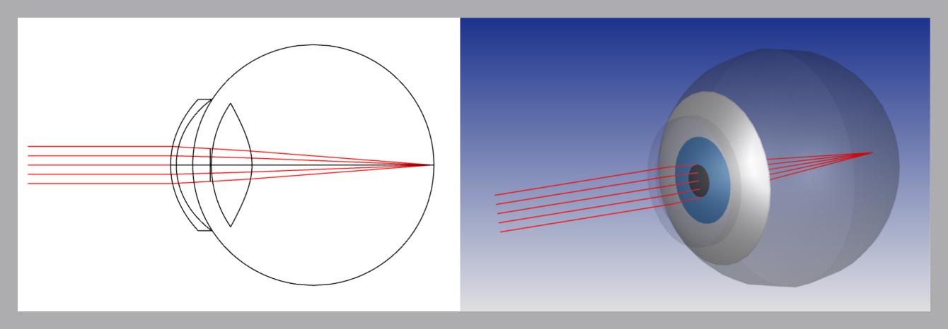 Simulatie oog