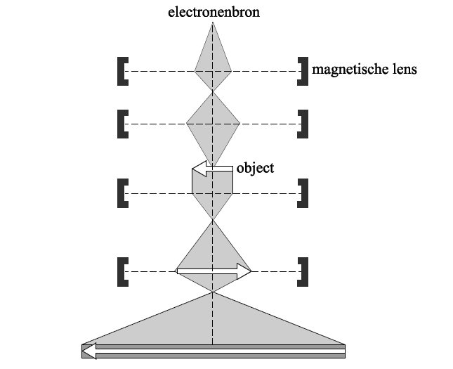 Elektronen-microscoop_figuur_2